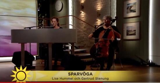 Magisk version av Sparvöga på Nyhetsmorgon i morse!
